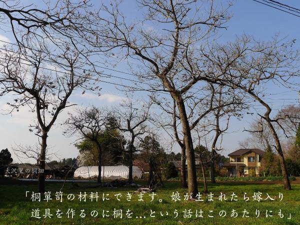 風土風景_塙_150524-43