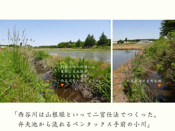 風土風景_塙_150524-64