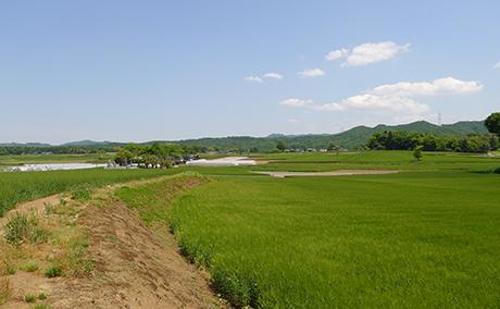 遠足コース1|ぐみ川水系|遠足|「土祭風景遠足」